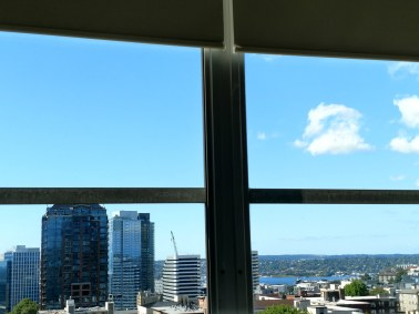 Lake Union - From my Hospital Bed
